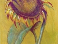 Sunflower pastel